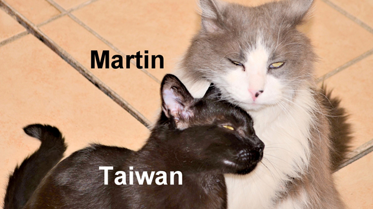 Martin, a Symbol of Hope