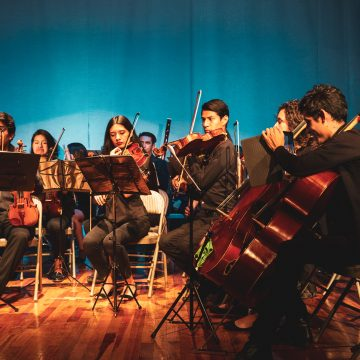 Pro Musica Youth Chamber Orchestra—Tenacity Under Pressure