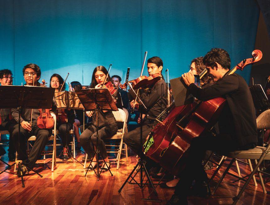 Pro Musica Youth Chamber Orchestra—Tenacity Under Pressure