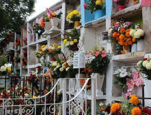 Deaths Increase: Lack of Spaces in Cemeteries