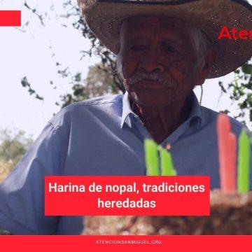 Harina de nopal, tradiciones heredadas