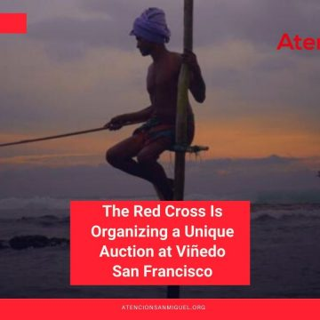 The Red Cross Is Organizing a Unique Auction at Viñedo San Francisco