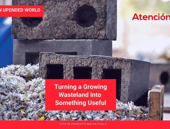 Learning to Live in an Upended World: Turning a Growing Wasteland into Something Useful