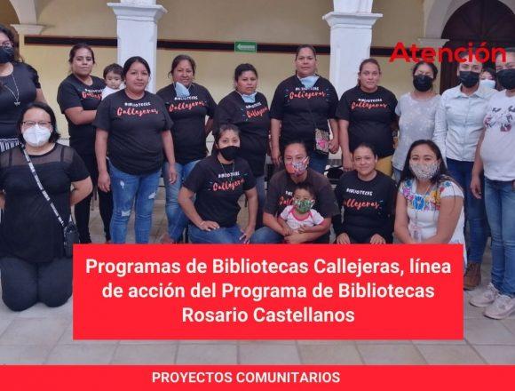 Programas de Bibliotecas Callejeras, línea de acción del Programa de Bibliotecas Rosario Castellanos