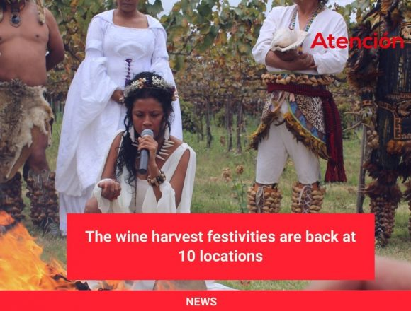 The wine harvest festivities are back at 10 locations