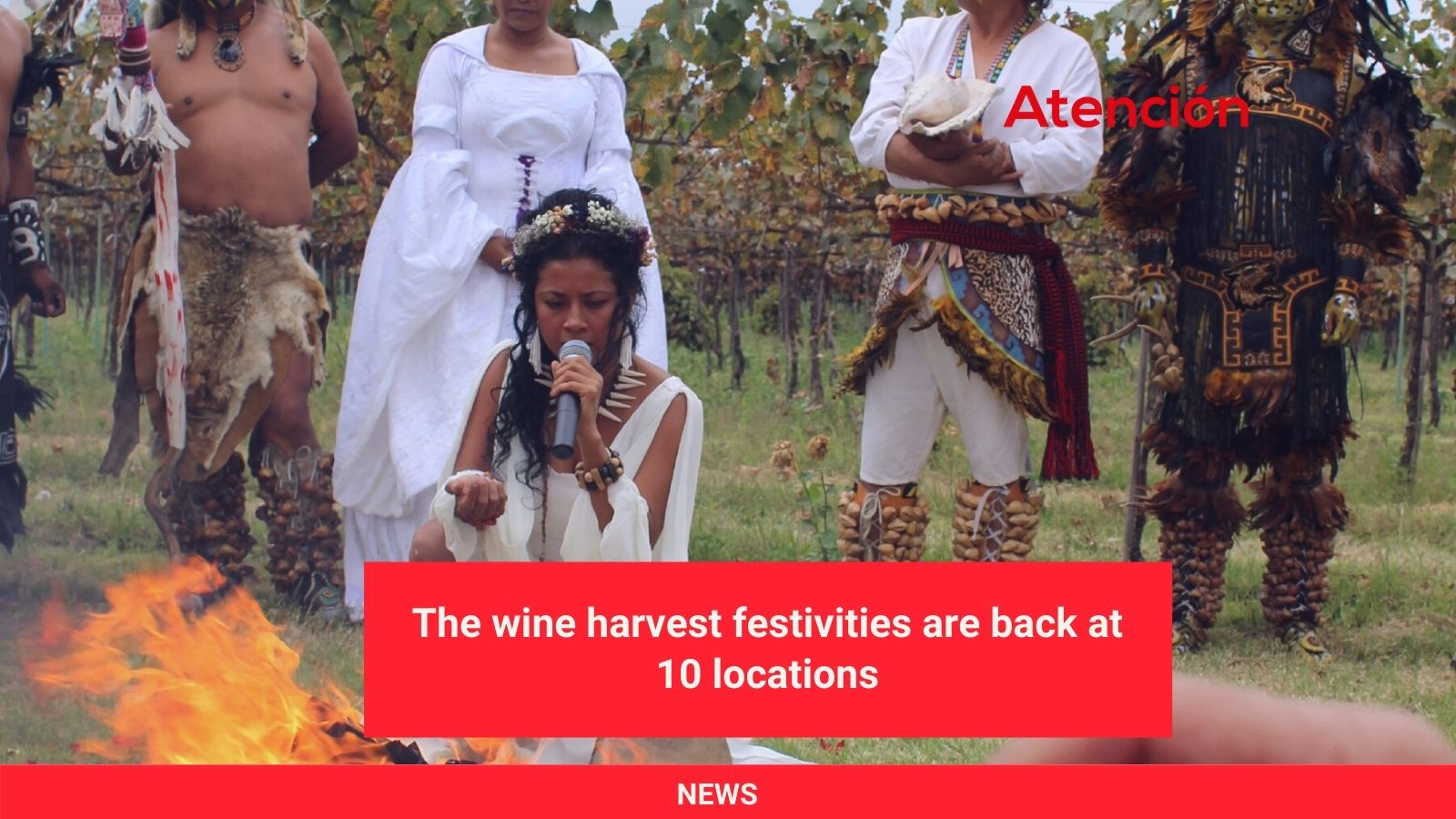 The-wine-harvest-festivities-are-back-at-10-locations.jpg