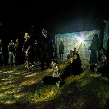 Nuevo Espacio De Arte Inmersivo Abre En Viñedo Dos Búhos