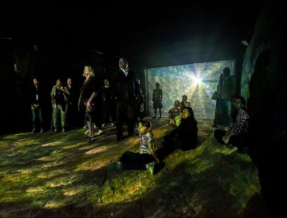New Immersive Art Space Opens at Viñedo Dos Búhos